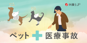 ペットの医療事故(医療過誤)にはどのような対応がとれる?